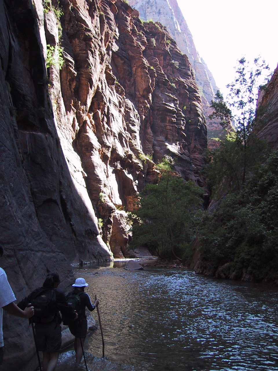 Now we were wading up the cold Virgin River on that 2001 trip