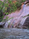 Zion_Narrows_005_06172001