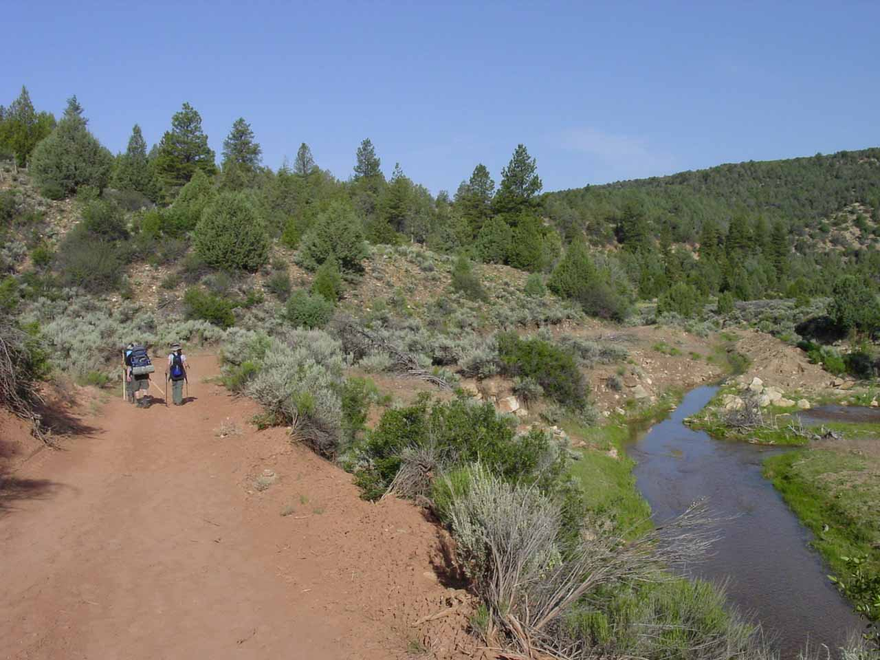 The group walking along the trail following the Virgin River