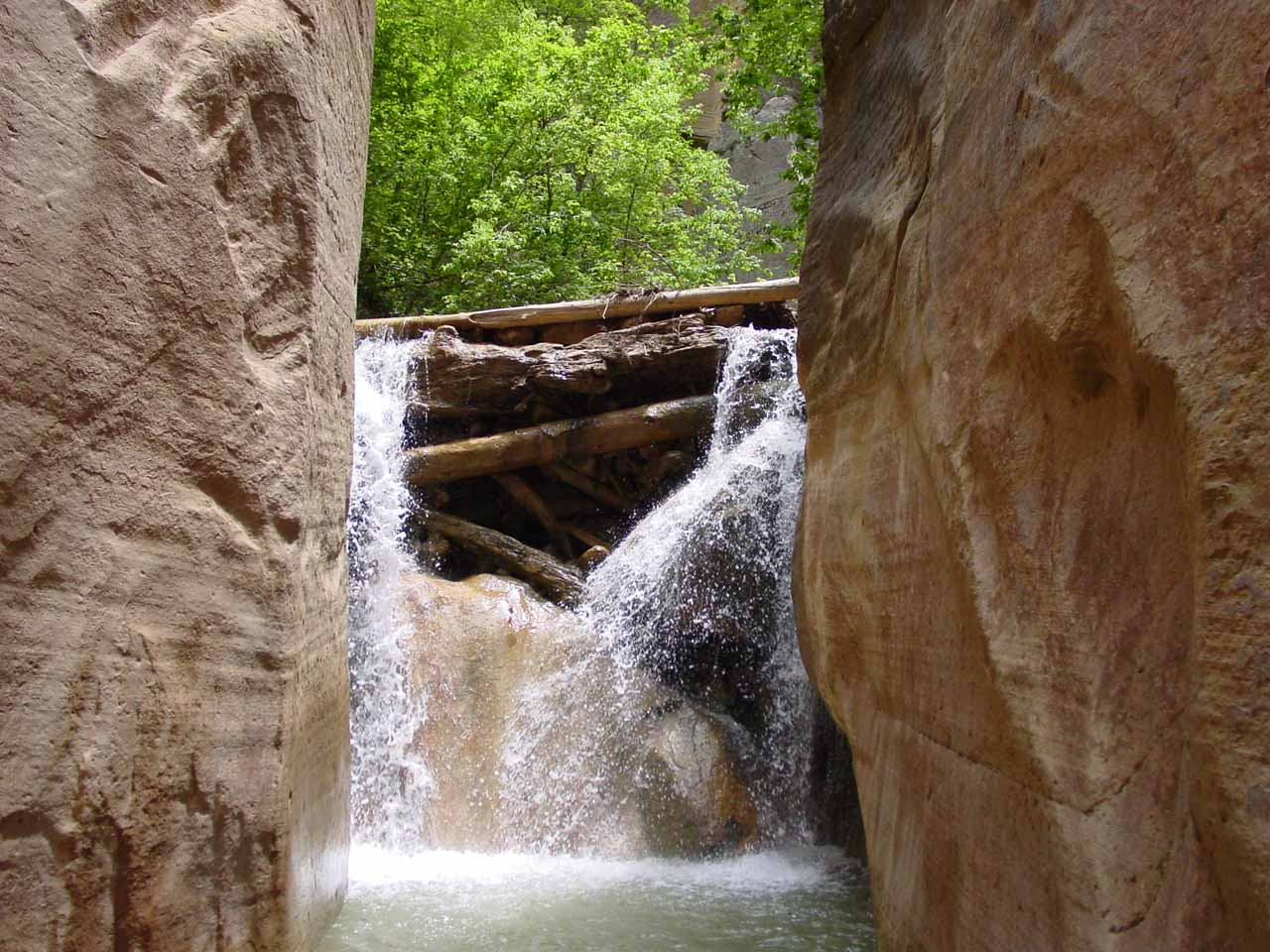 A 12ft waterfall obstacle comprised of a logjam and rocks in the Upper Narrows