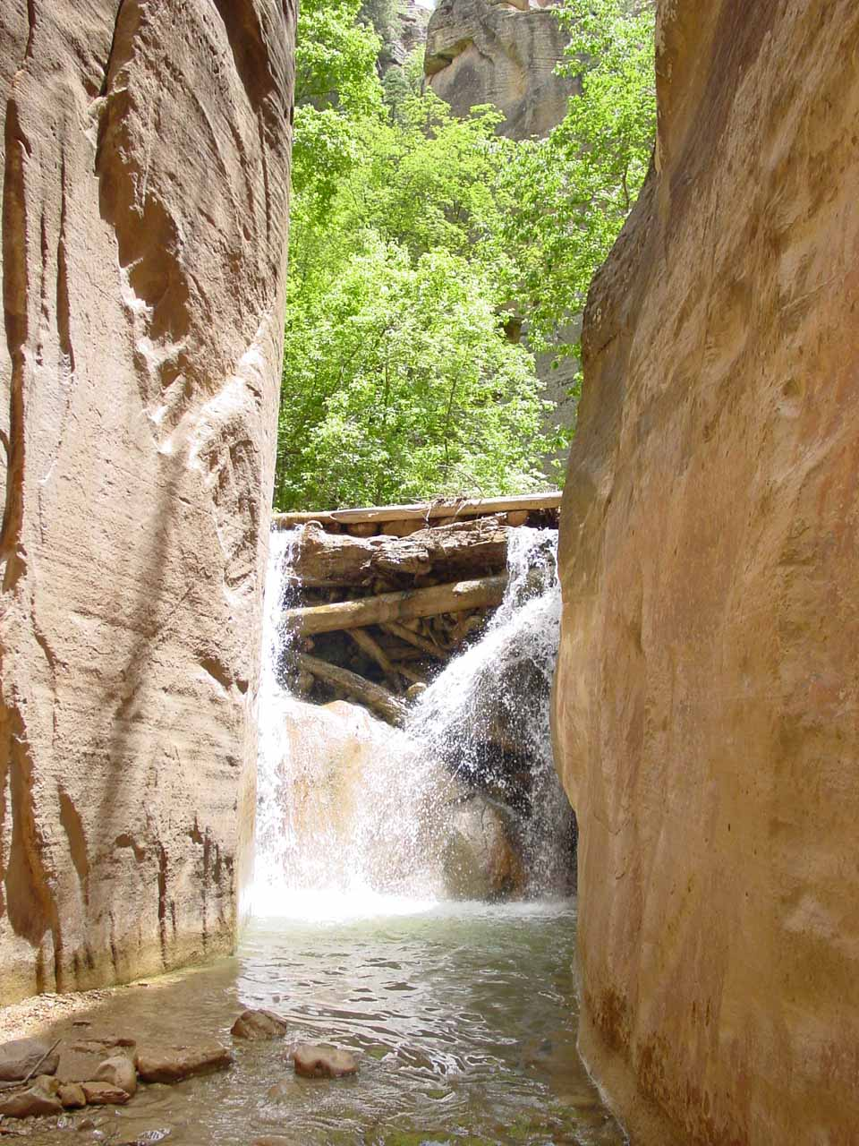 A waterfall in the upper section of the Zion Narrows