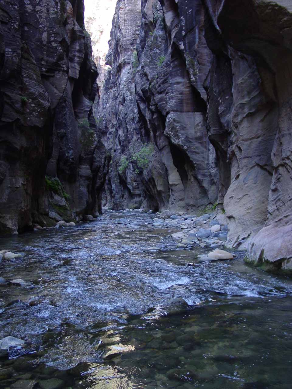 The Narrows that is wall-to-wall water at this point