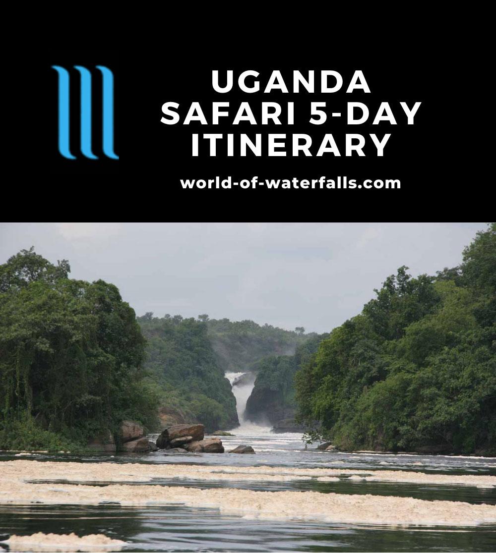 Uganda Safari 5-Day Itinerary