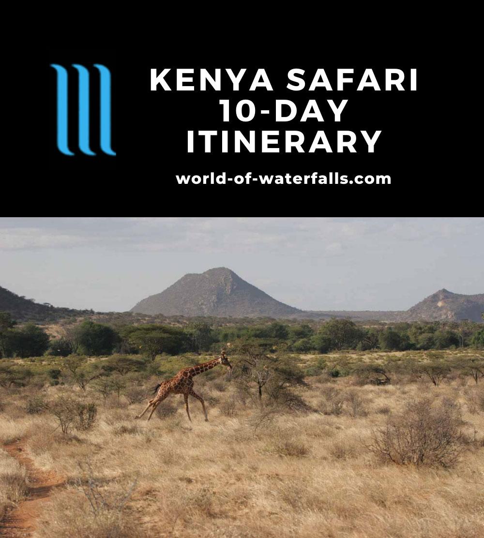 Kenya Safari 10-Day Itinerary