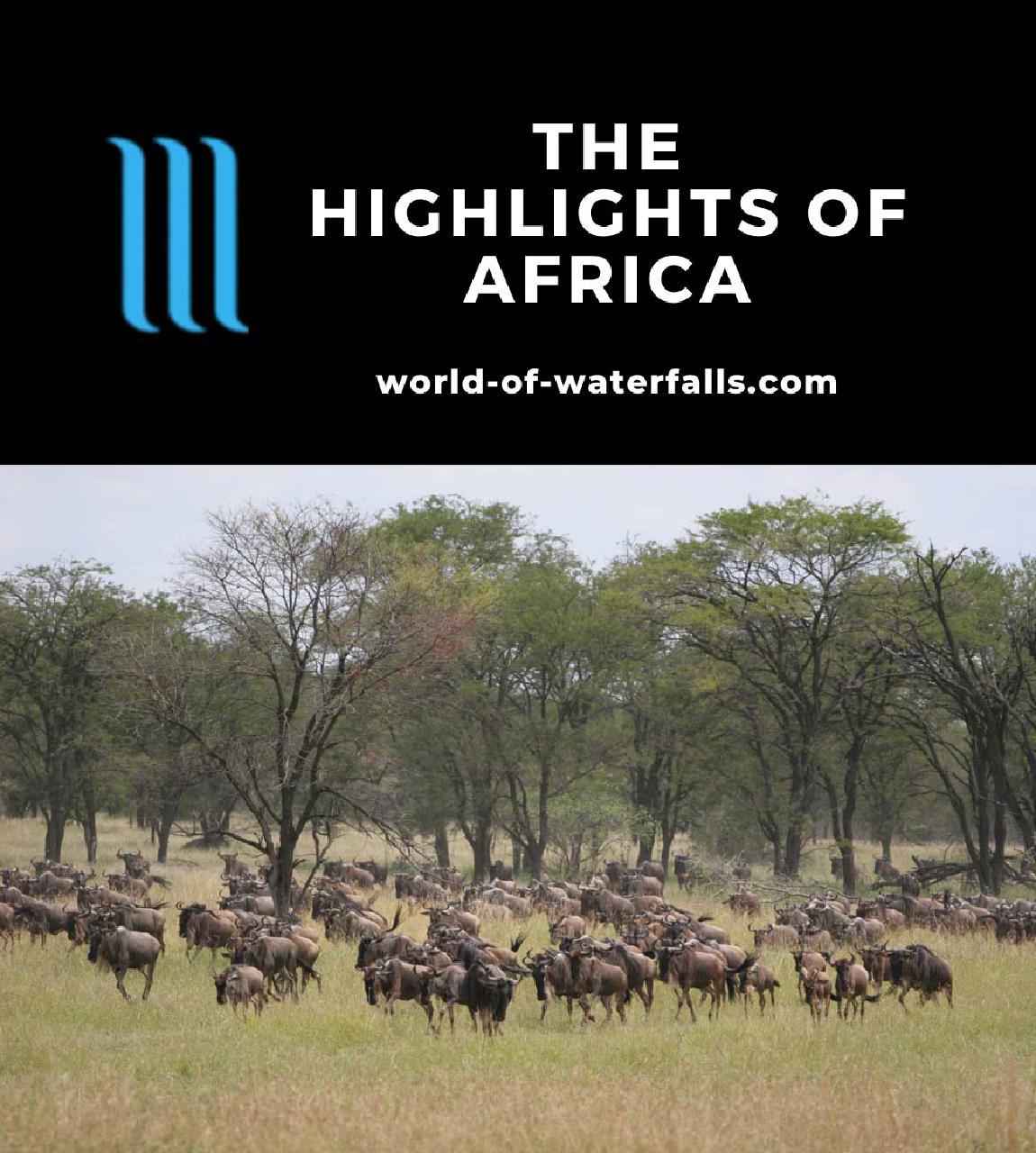 Africa Highlights
