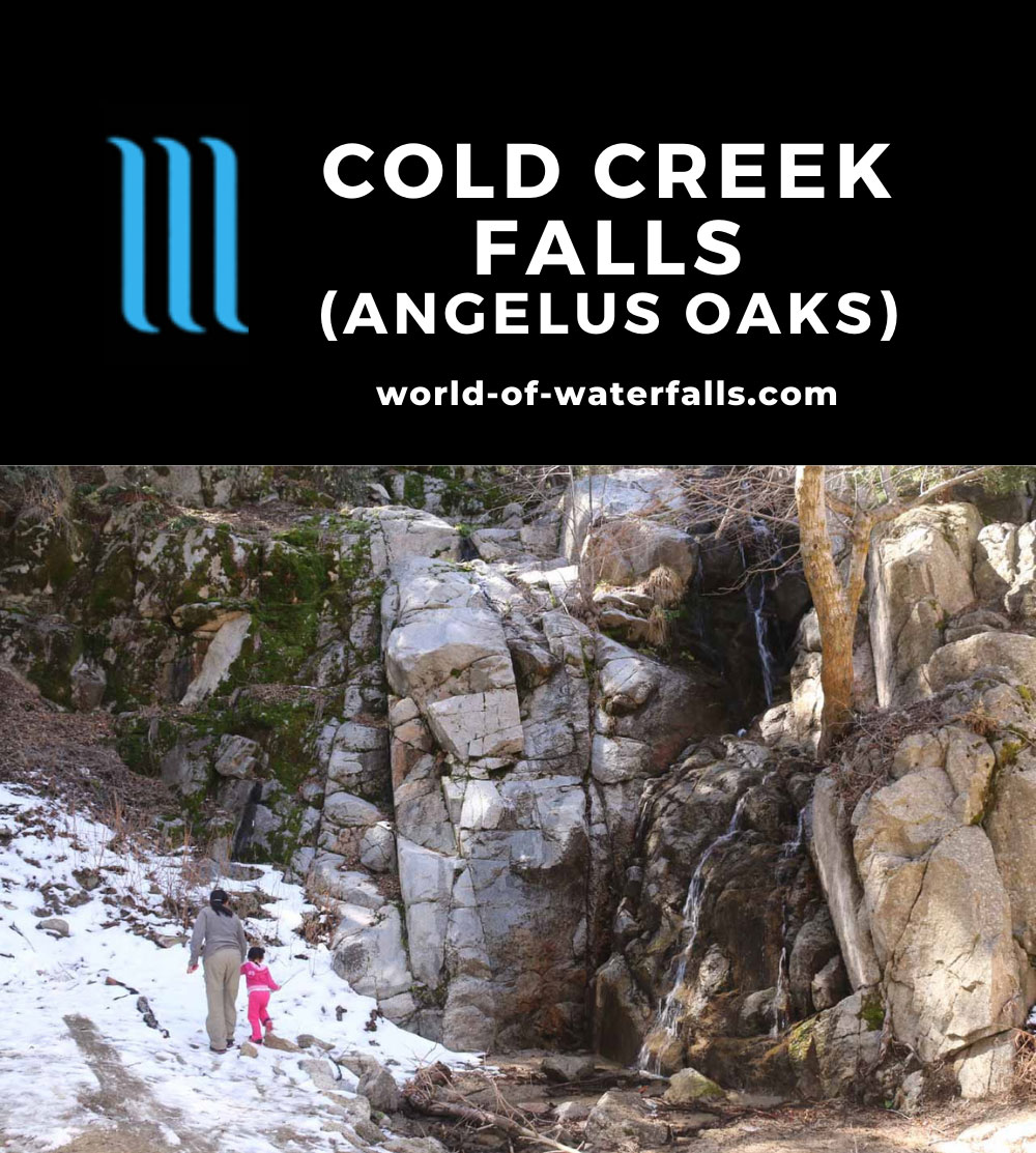 Angelus_Oaks_079_03072015 - 'Cold Creek Falls'