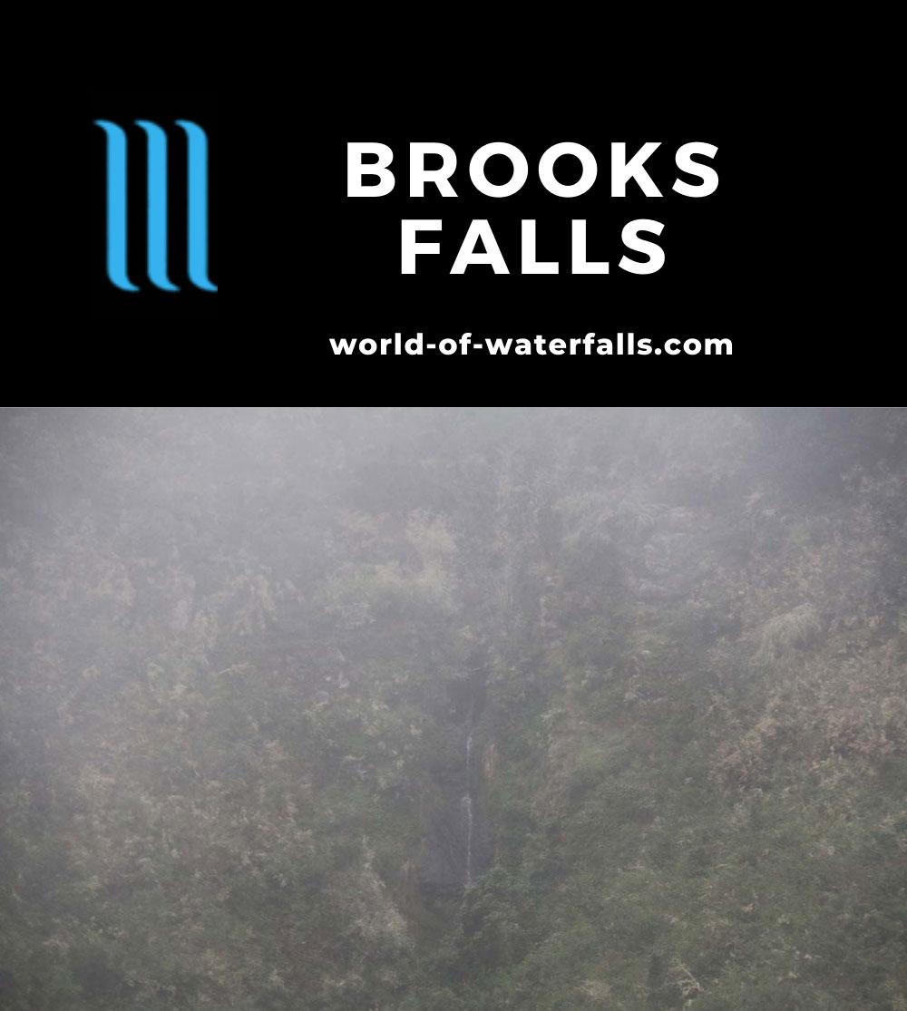 Brooks_Falls_053_04202019 - Brooks Falls seen through the fog and drizzle/rain