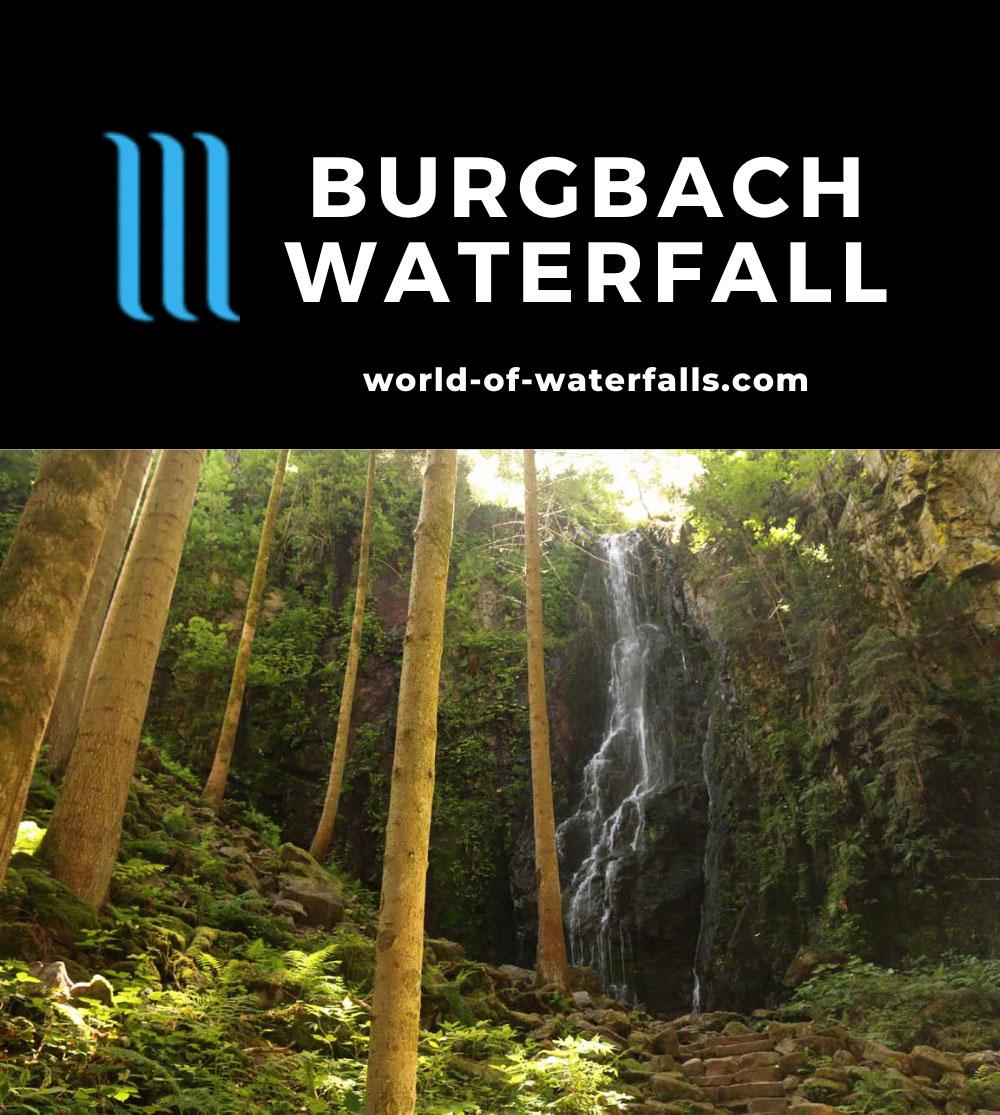 Burgbach_Waterfall_066_06222018 - The Burgbach Waterfall
