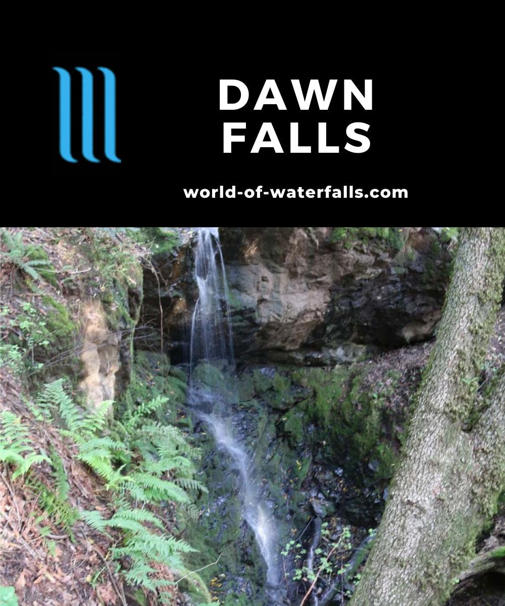 Dawn_Falls_072_04192019 - Dawn Falls