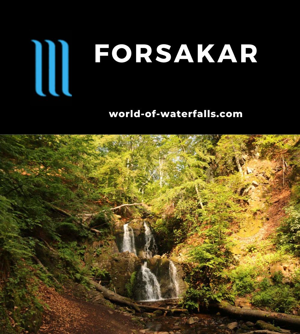 Forsakar_045_07292019 - Forsakar
