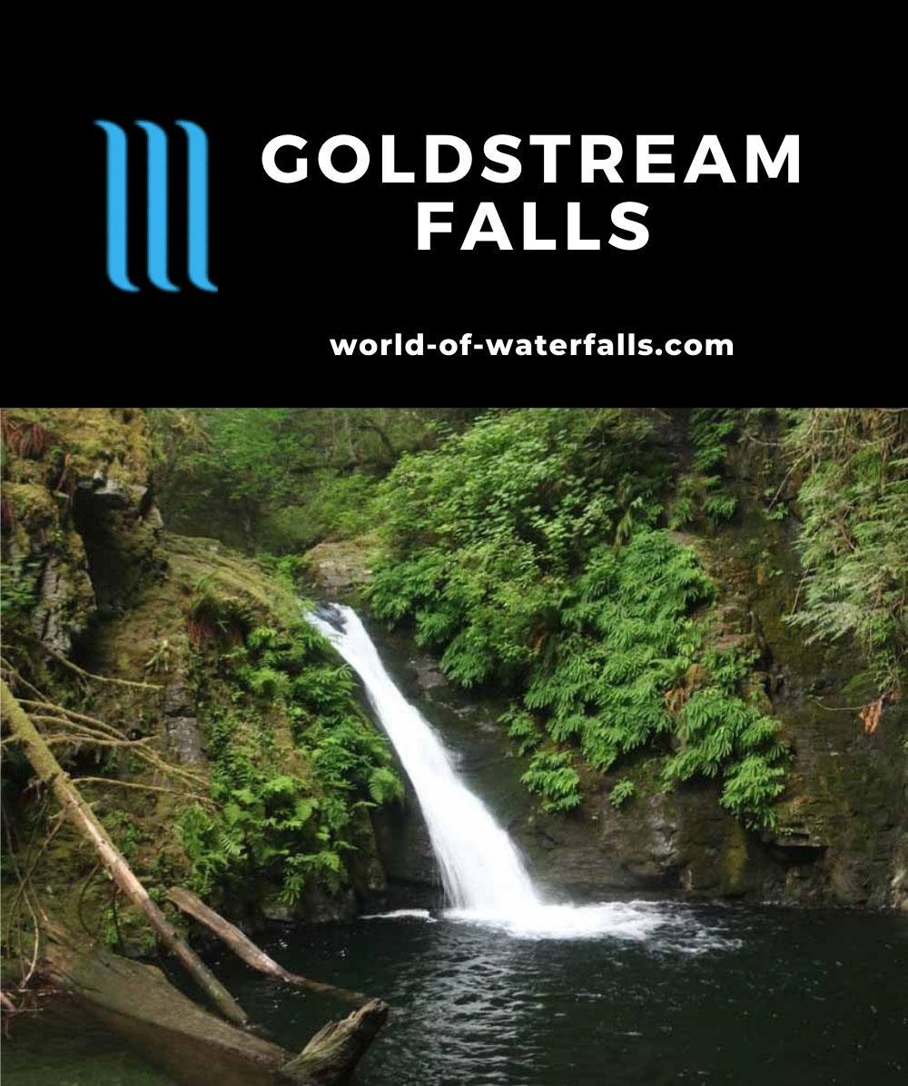 Goldstream_Falls_031_08032017 - Goldstream Falls
