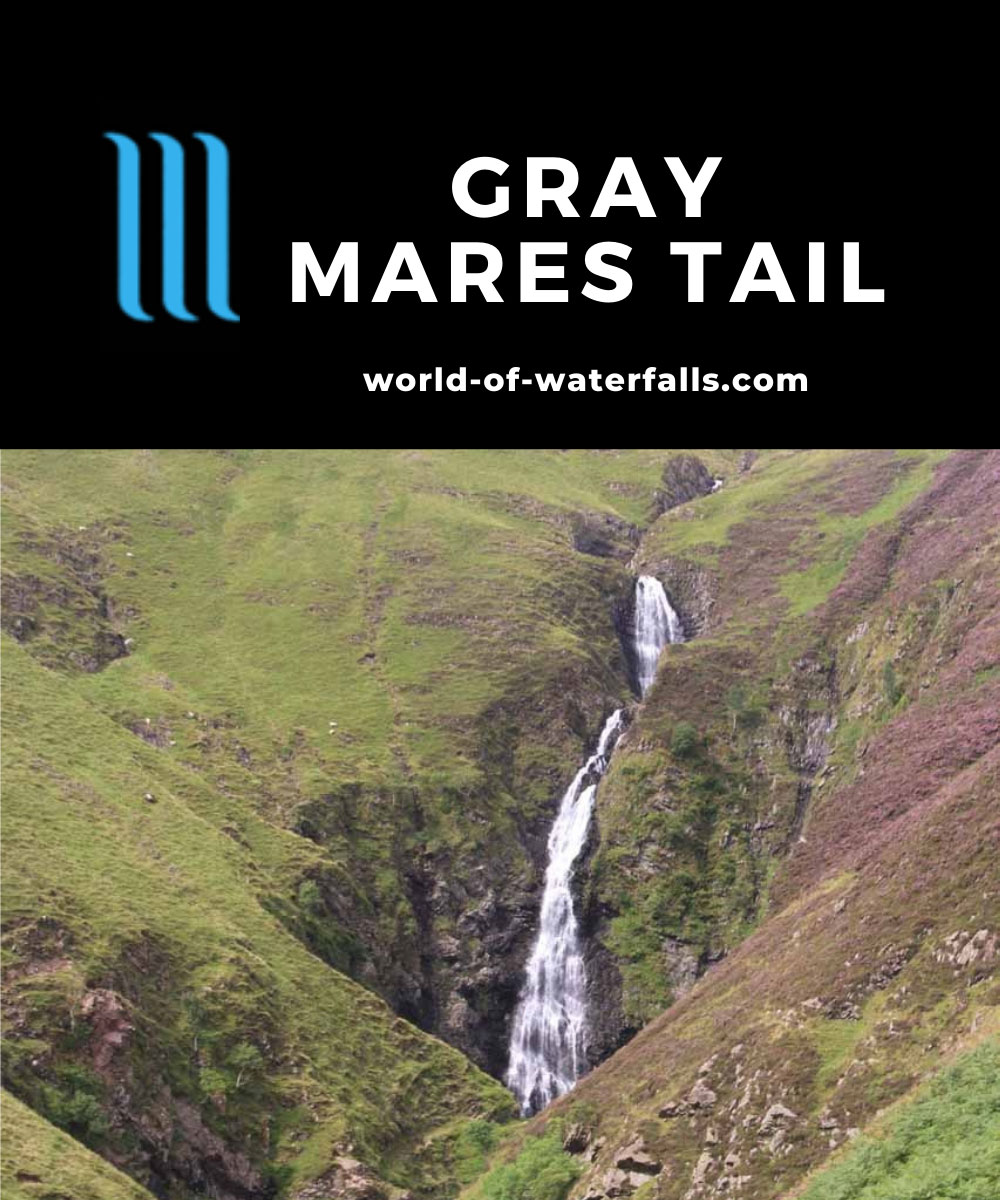 Gray_Mares_Tail_072_08202014 - Gray Mare's Tail