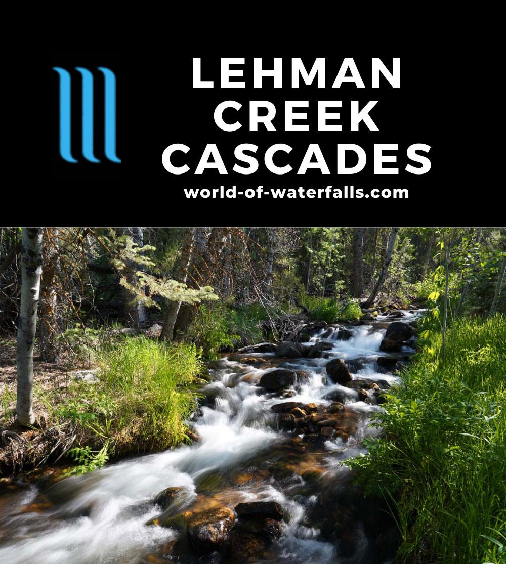Lehman_Creek_036_06152021 - One of many of the Lehman Creek Cascades