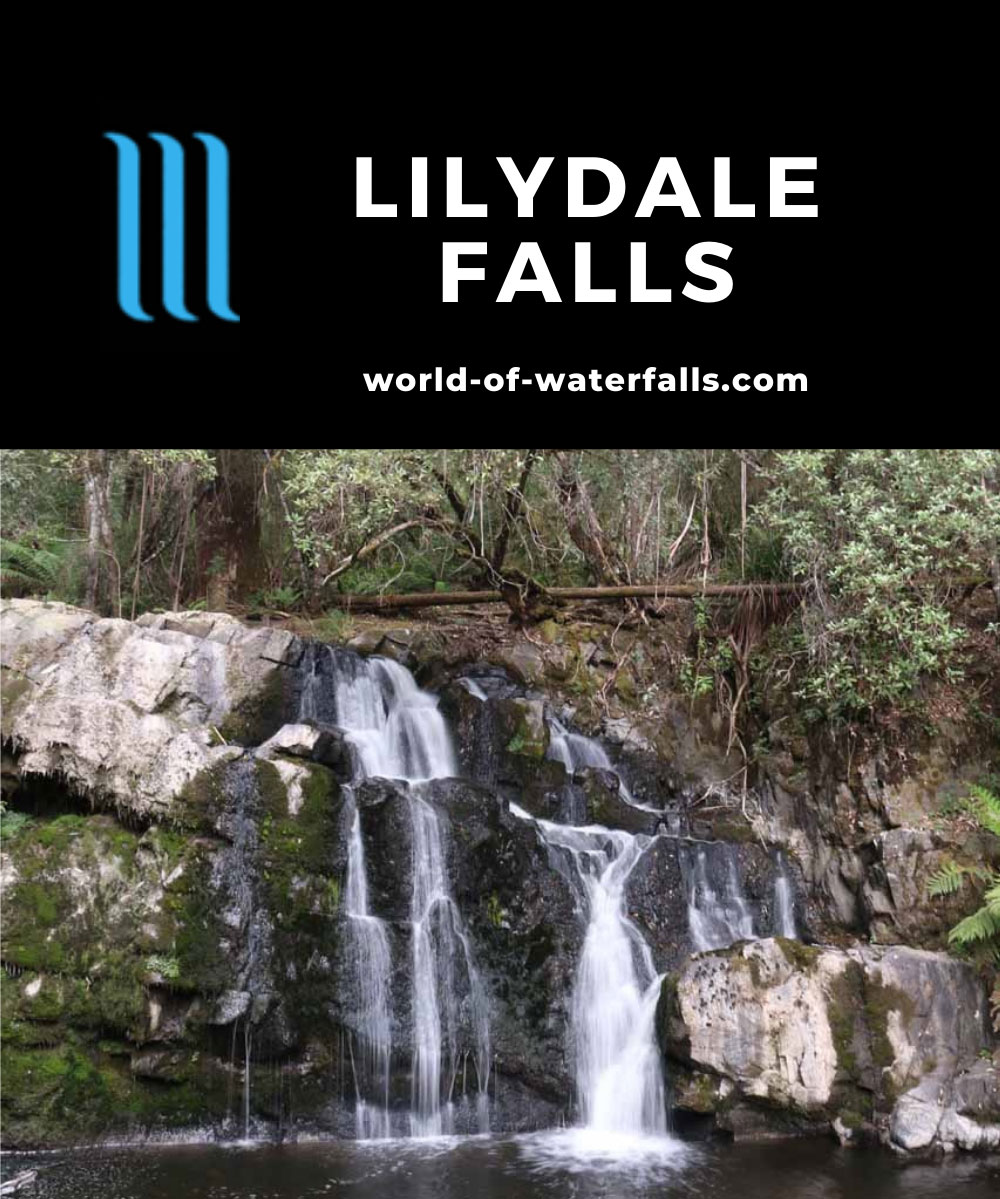 Lilydale_Falls_17_050_11232017 - Lilydale Falls - the Second Falls