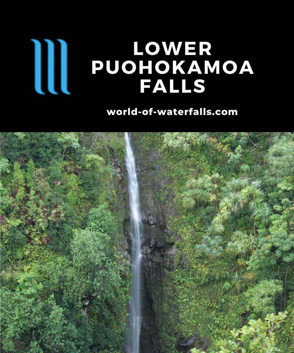 Lower_Puohokamoa_Falls_024_02232007 - Lower Puohokamoa Falls