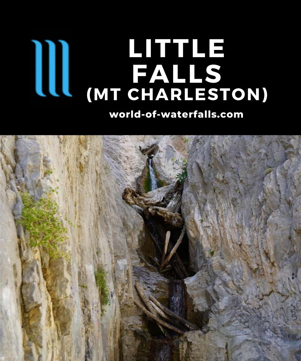 Mt_Charleston_489_08112020 - Little Falls in mid-August