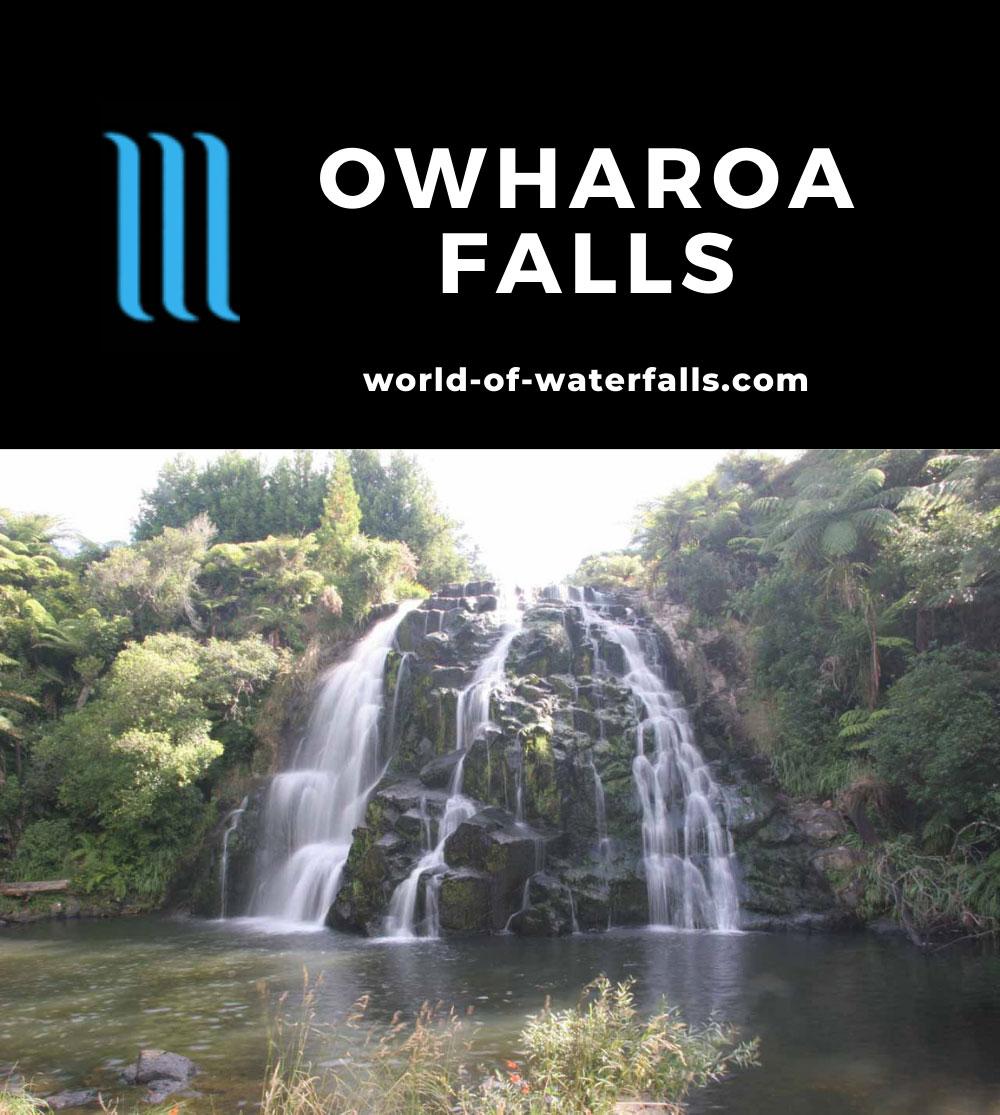 Owharoa_Falls_014_01072010 - Owharoa Falls