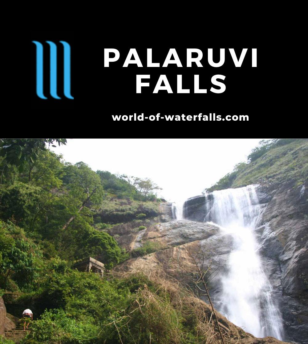 Palaruvi_Falls_044_11192009 - Looking up towards the top of the Palaruvi Falls