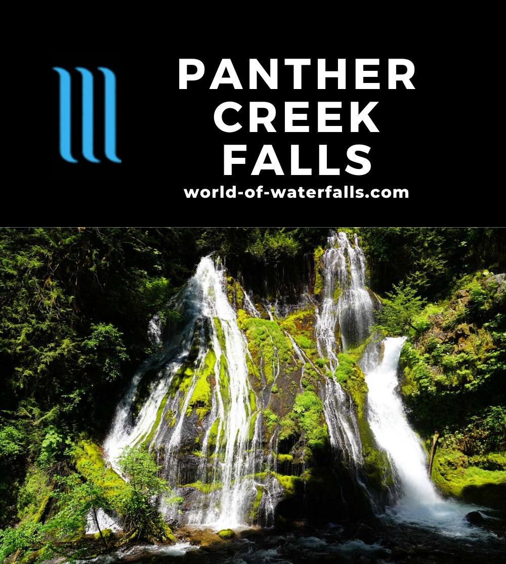 Panther_Creek_Falls_037_06242021 - Panther Creek Falls