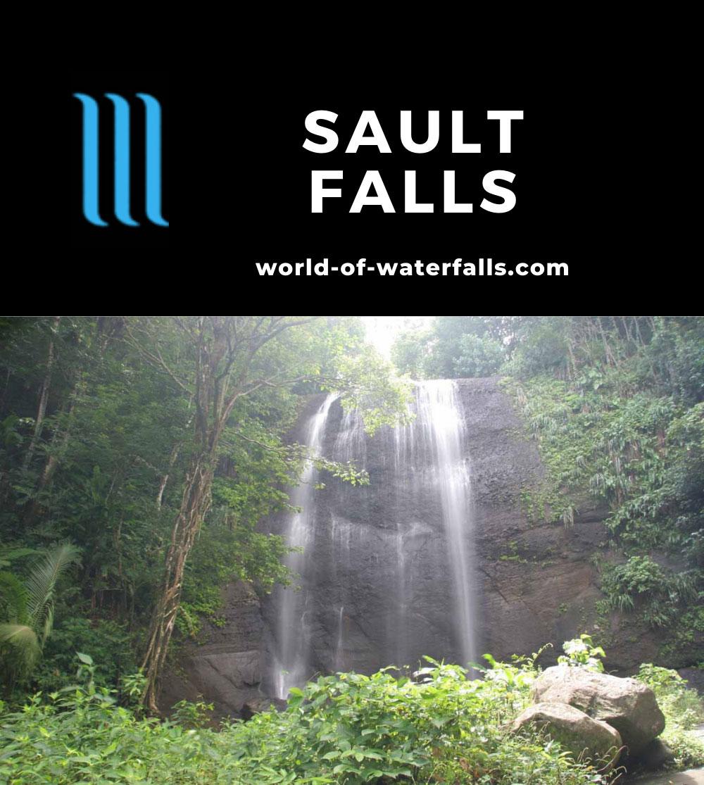 Sault_Falls_051_11282008 - Sault Falls