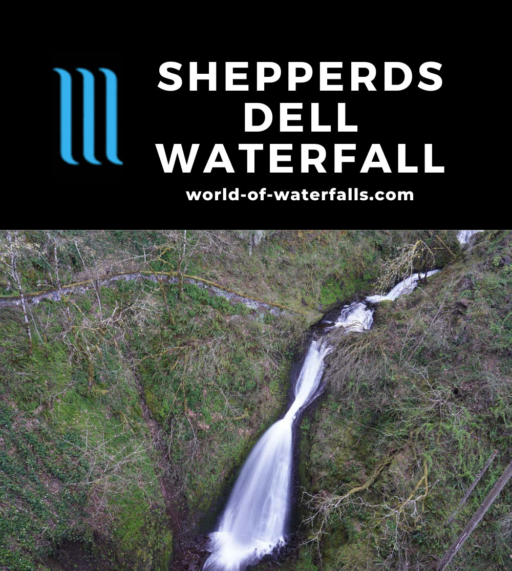 Shepperds_Dell_017_04062021 - The Shepperds Dell Waterfall