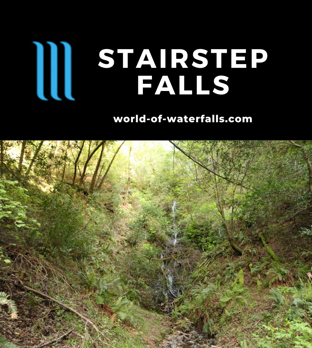 Stairstep_Falls_071_04182019 - Stairstep Falls in low flow and fronted by lots of deadfalls