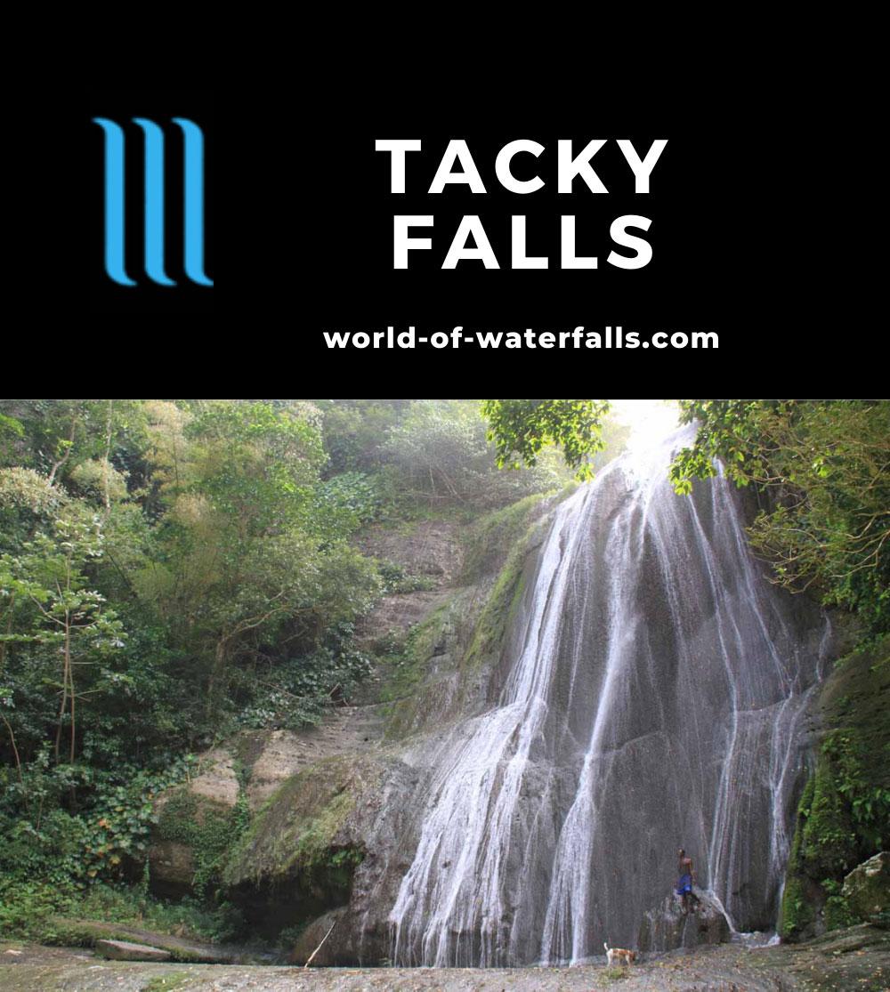 Tacky_Falls_013_12272011 - Tacky Falls (the upper waterfall)