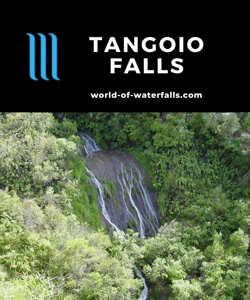Tangoio_Falls_011_11152004 - Tangoio Falls