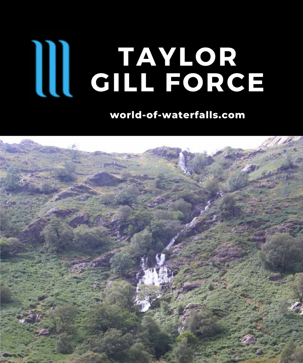 Taylor_Gill_Force_004_08182014 - Looking directly at what I think is the Taylor Gill Force in context