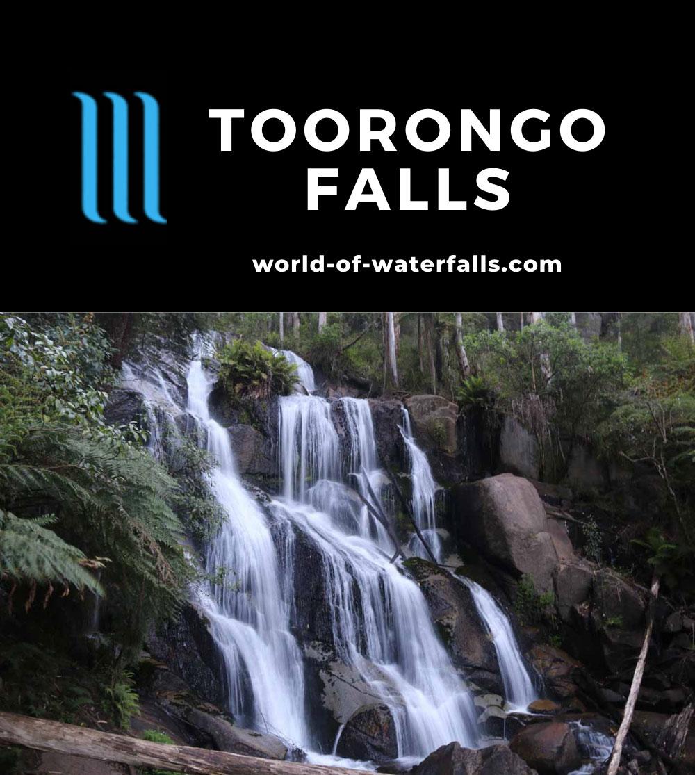 Toorongo_Falls_17_032_11222017 - Toorongo Falls