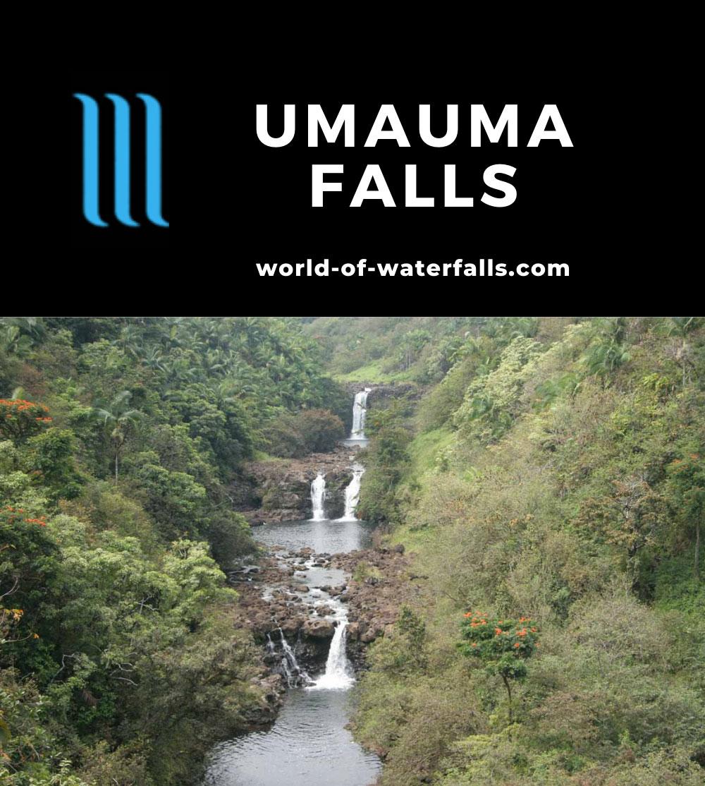 Umauma_Falls_017_03092007 - Umauma Falls