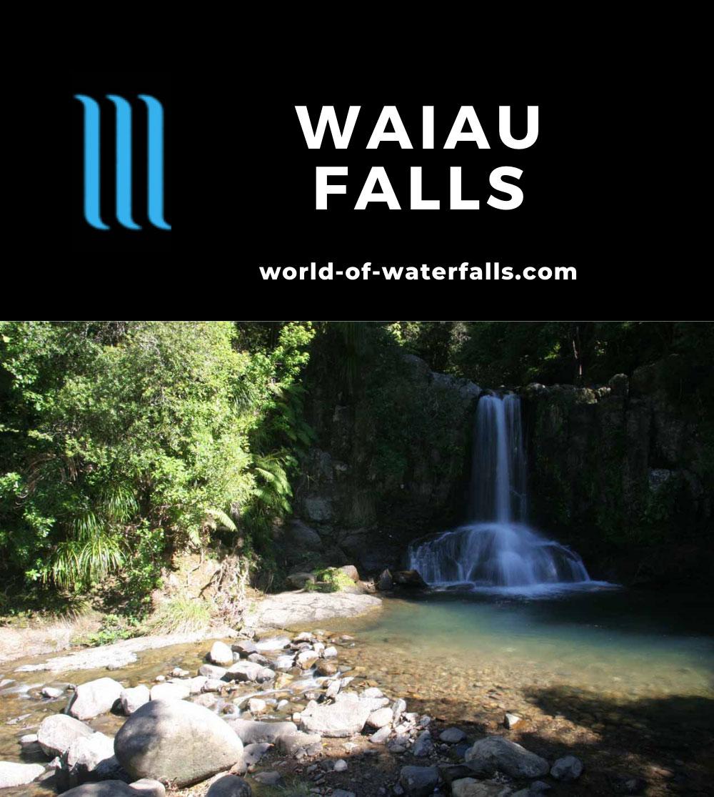 Waiau_Falls_024_01082010 - Waiau Falls