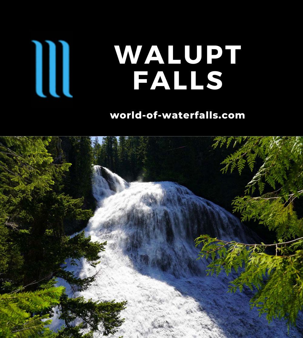Walupt_Falls_053_06212021 - Walupt Falls or Walupt Creek Falls