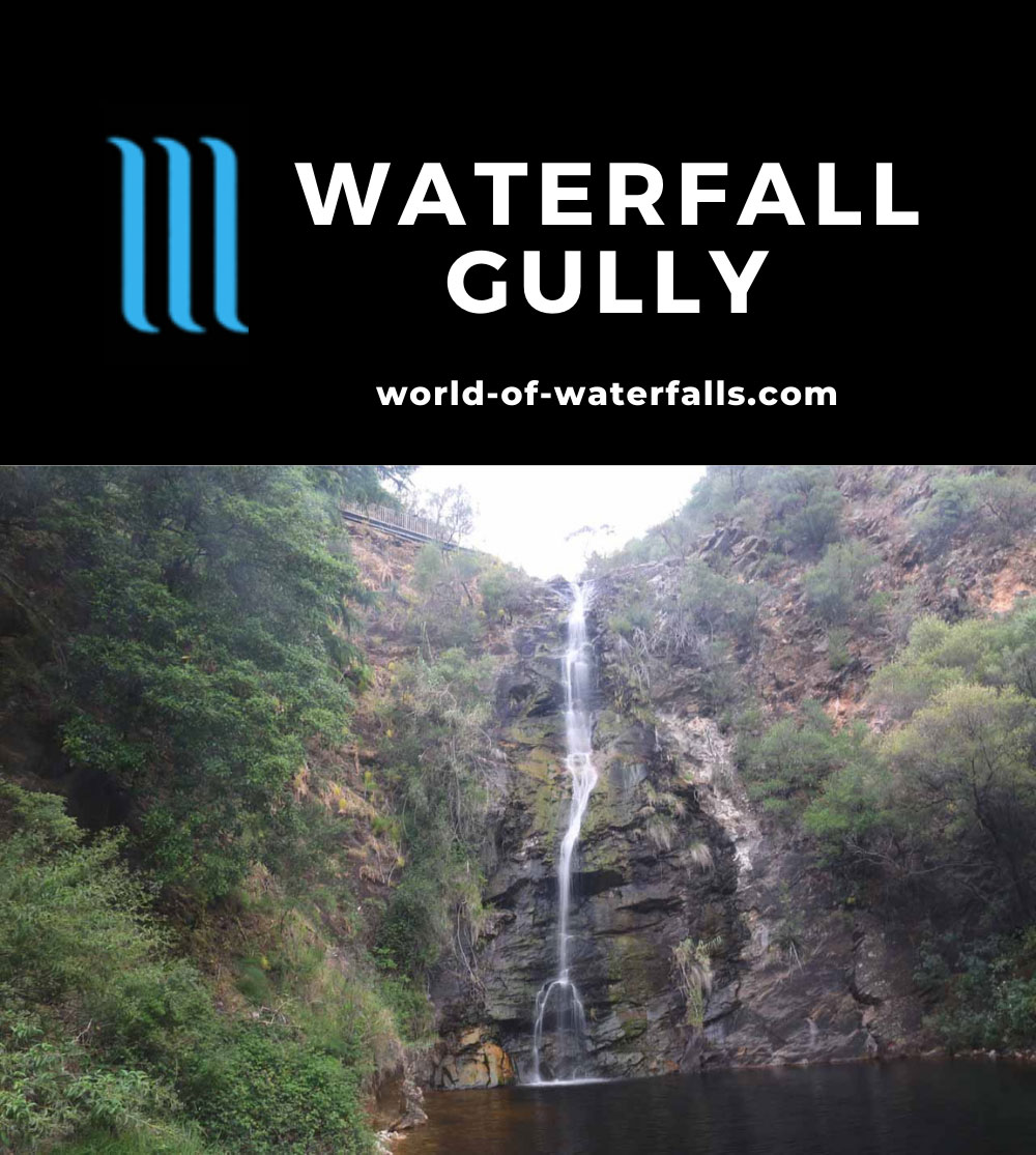 Waterfall_Gully_17_030_11102017 - First Falls in Waterfall Gully