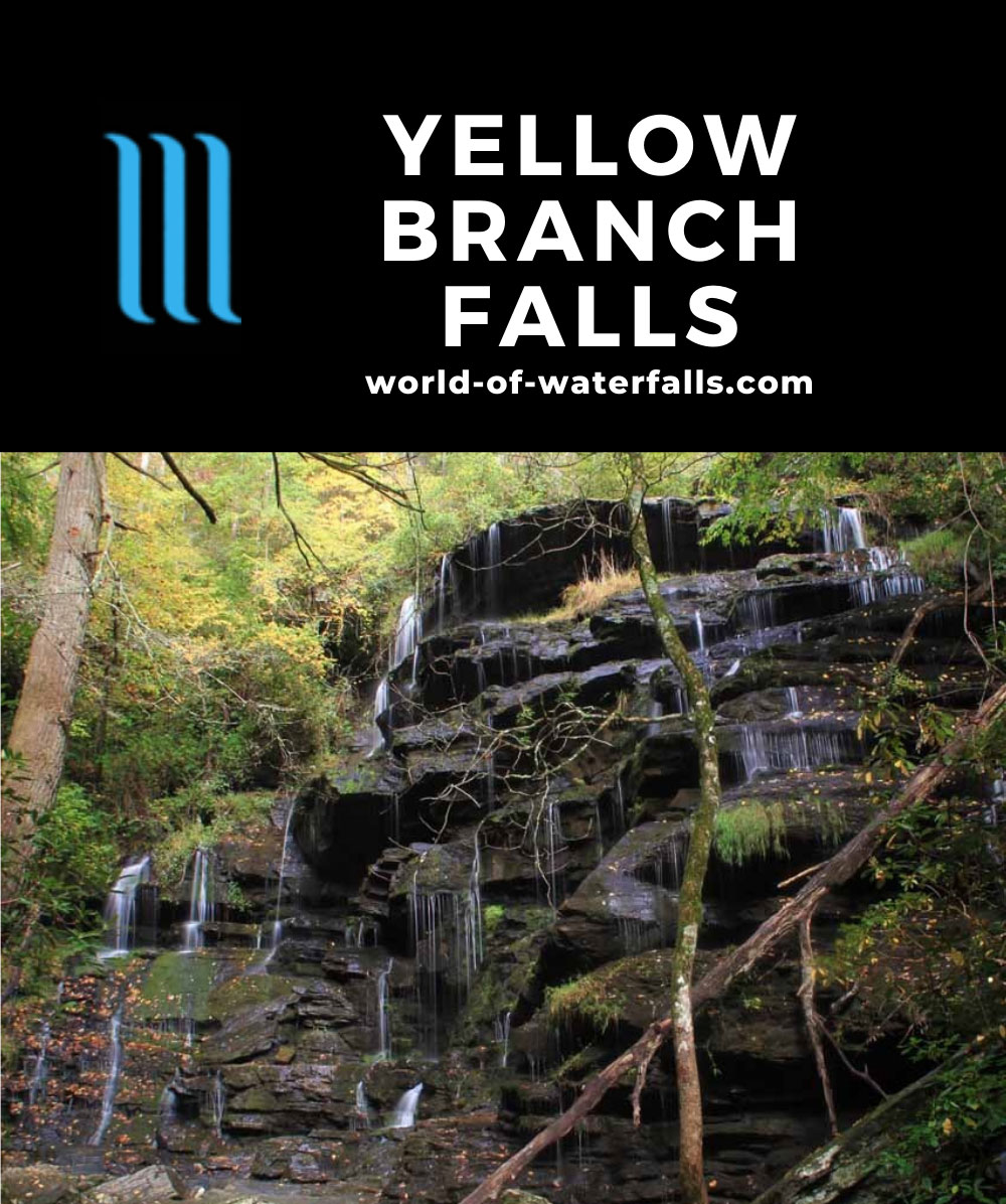 Yellow_Branch_Falls_049_20121015 - Yellow Branch Falls in pretty low flow during our Autumn visit